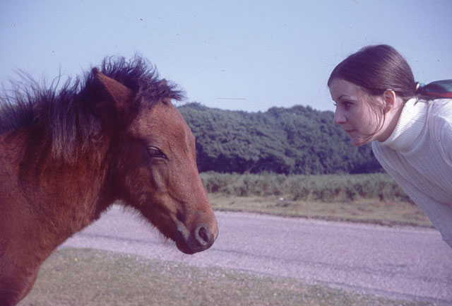 Mum and a wild horse.